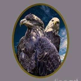 Mim White - Bald Eagles
