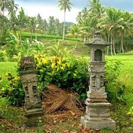 Mark Sellers - Balinese Rice Field Shrines