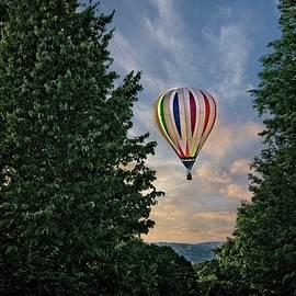 LuAnn Griffin - Balloon Moment