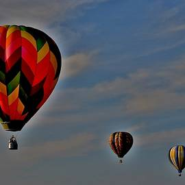 Balloons in the Sky by Eileen Brymer