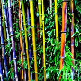Ed Weidman - Bamboo Beauty #1