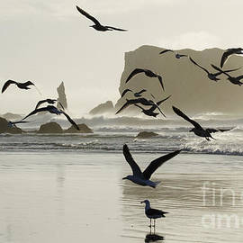 Bandon By The Sea Oregon 15 by Bob Christopher