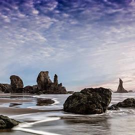 Wes and Dotty Weber - Bandon Sea Stacks
