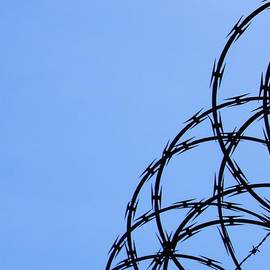 Barbed Wire and Blue Sky by Sarah Loft