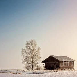 Jukka Heinovirta - Barn And Birch Under The Spring Sky