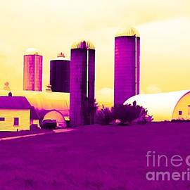 Rose Santuci-Sofranko - Barn and Silos Amertrine Effect