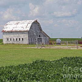 Barn and Soybeans in Indiana by Steve Gass