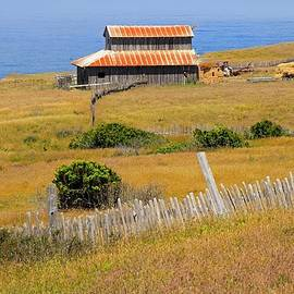 Barn By the Sea by Donna Kennedy