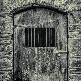 Barn Door by Andrew Wilson