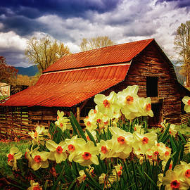 Debra and Dave Vanderlaan - Barn in Daffodils
