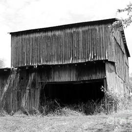 Barn in Kentucky no 79 by Dwight Cook