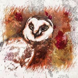Barn Owl Art by Tina LeCour