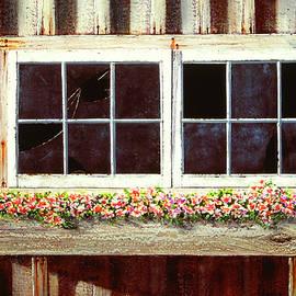 Barn Window Box by Frank Wilson
