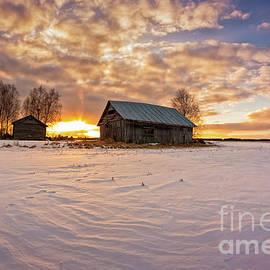 Jukka Heinovirta - Barns And Trees In The Sunset