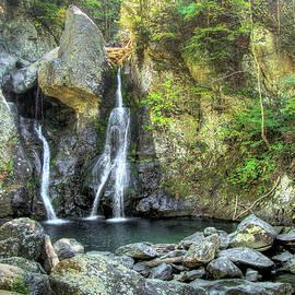 Betsy Zimmerli - BashBish Falls