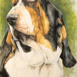 Basset Hound in Watercolor by Barbara Keith