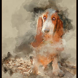 Ronel Broderick - Basset Hound with water paint effect