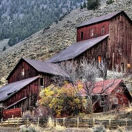 Michael Morse - Bayhorse Mill