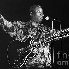 BB King 96-2193 by Gary Gingrich Galleries