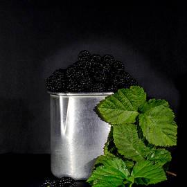 Blackberries by Edgar Laureano