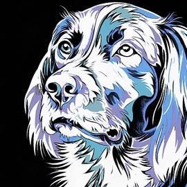Vadim Pavlov - BBW Dog