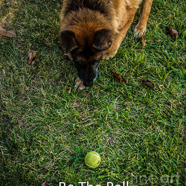 Be The Ball by Blake Webster