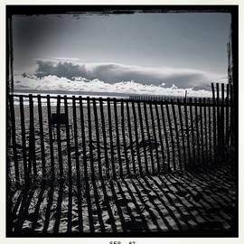 Judith Kitzes - Beach and Fence