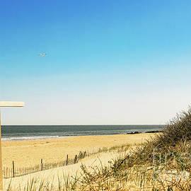 Colleen Kammerer - Beach Blessings