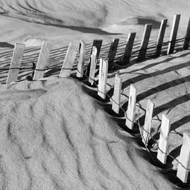 Beach Fence Meeting by Bob Neiman