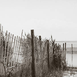 Beach Fences at LBI by Colleen Kammerer