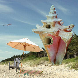 Conch House by M Spadecaller