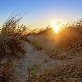 Michael Scott - Beach Rays