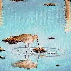 Beach Reflection by Adam Johnson