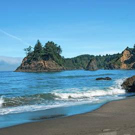 Beach Walk by Alana Thrower