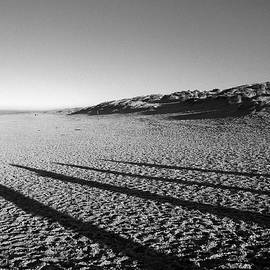 Beach With Shadows by Sascha Meyer