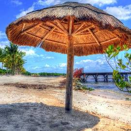Beaches  Mexico by Charlene Cox