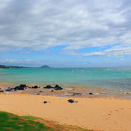 Michael Rucker - Beaches of Hawaii