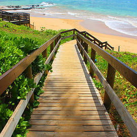 Michael Rucker - Beaches of Maui