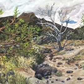 Caroline Owen-Doar - Bear Canyon Wash