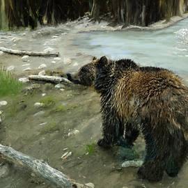 Susan Kinney - Bear Fun