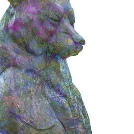 Pamela Williams - Beary Bear