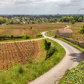 W Chris Fooshee - Beaune France from the vineyards