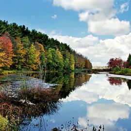 Beautiful Autumn Reflection by Christina Rollo