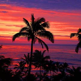 Michael Rucker - Beautiful Hawaiian Sunset