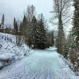 Mike Bennett - Beautiful Morning Walk! #sunpeaks