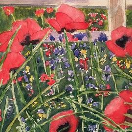 Sue Carmony - Beautiful Poppies