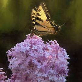 Jeff Folger - Beautiful Spring Arrives