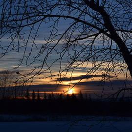 Johann Brown - Beautiful Sunset