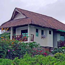 Kay Novy - Beautiful Thatched Roof Home