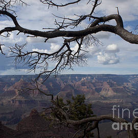 Ivete Basso Photography - Beautiful View of Grand Canyon
